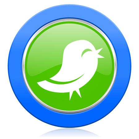 bird icon photo