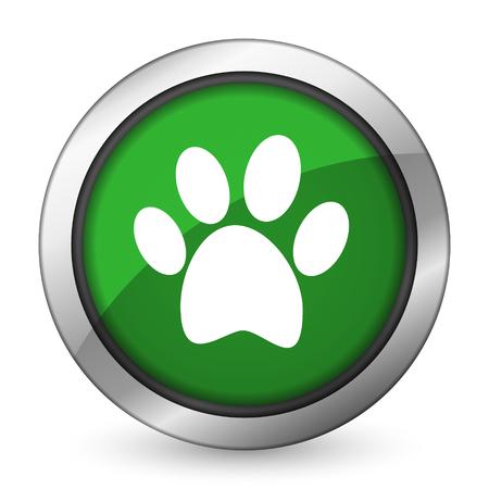 foot green icon photo