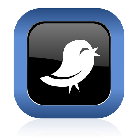 twitter: twitter square glossy icon Stock Photo