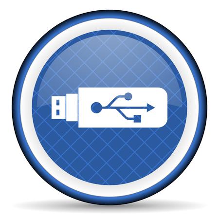 flash memory: usb blue icon flash memory sign