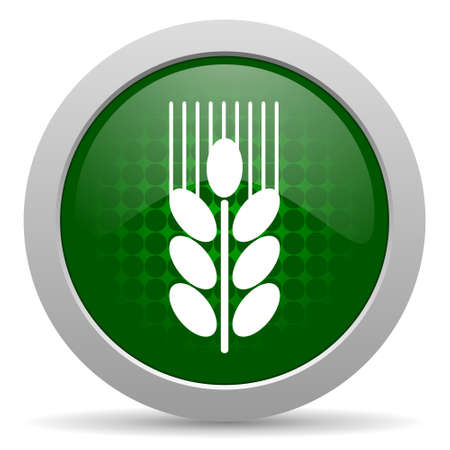 grain icon agriculture sign photo