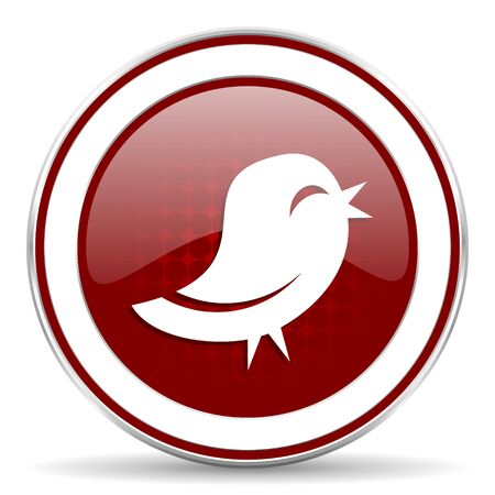 bird red glossy web icon photo