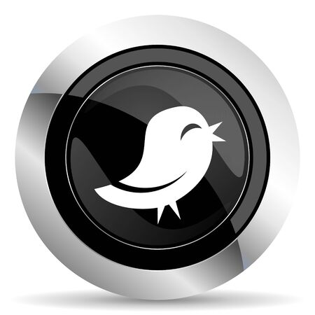 twitter: twitter icon, black chrome button