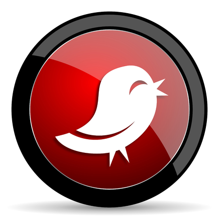 twitter: twitter red circle glossy web icon on white background - set440 Stock Photo