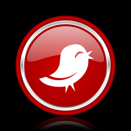 bacground: twitter red glossy cirle web icon on black bacground