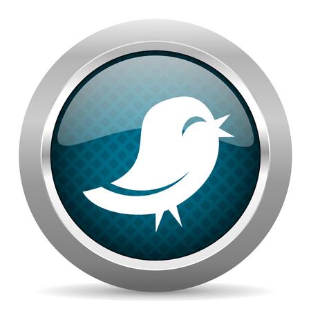chrome border: twitter blue silver chrome border icon on white background