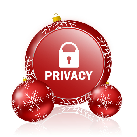 privacy christmas icon