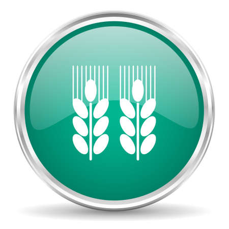 crop circles: agricultural blue glossy circle web icon Stock Photo