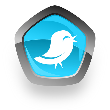 twitter: twitter blue metallic chrome web pentagon glossy icon
