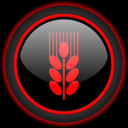 grain: grain black and red glossy internet icon on black background Stock Photo