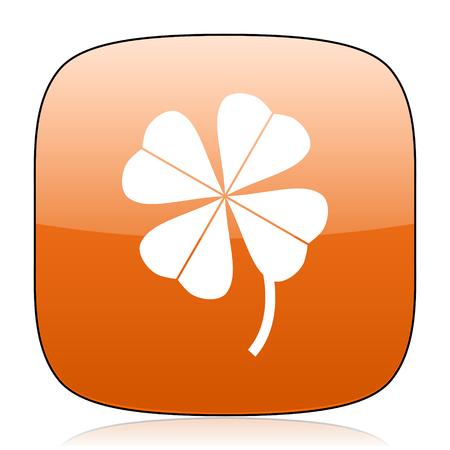fourleaf: four-leaf clover orange square glossy web icon Stock Photo
