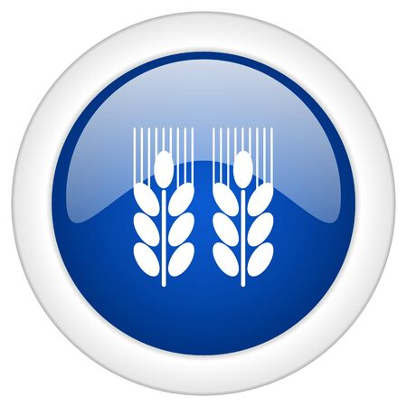 crop circle: agricultural icon, circle blue glossy internet button, web and mobile app illustration Stock Photo