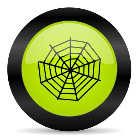 spider web: spider web icon