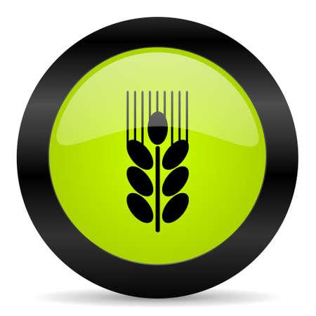 grain: grain icon