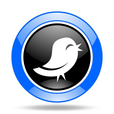 bird round glossy blue and black web icon Stock Photo