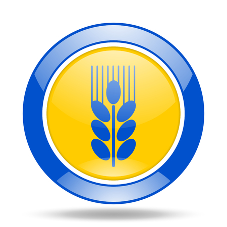 crop circles: grain round glossy blue and yellow web icon