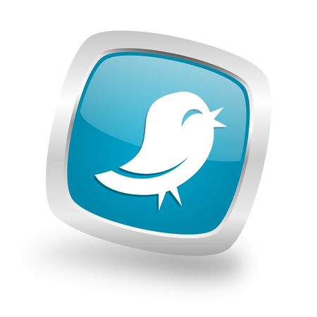 twitter: twitter square glossy chrome silver metallic web icon