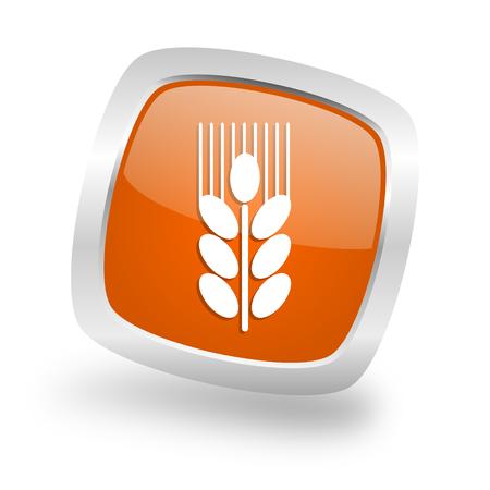grain square glossy orange chrome silver metallic web icon