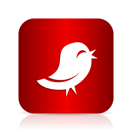 tweet icon: twitter red square modern design icon