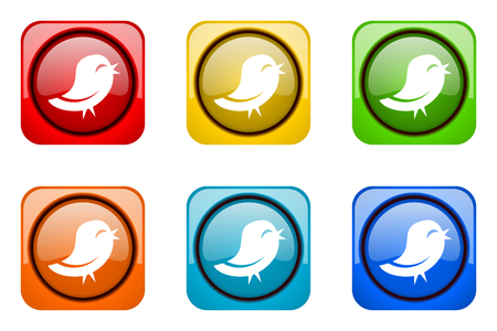 twitter: twitter colorful web icons