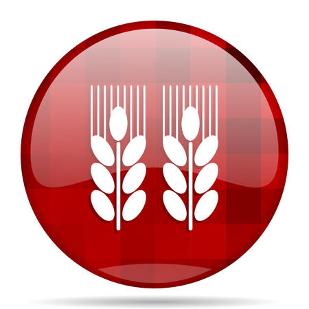 whole grain: agricultural red round glossy modern design web icon