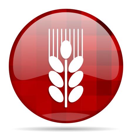 grain red round glossy modern design web icon
