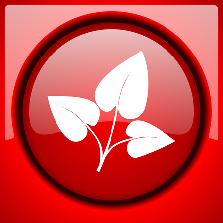 leaf red icon plastic glossy button Stock Photo