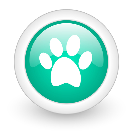 chase: foot round glossy web icon on white background