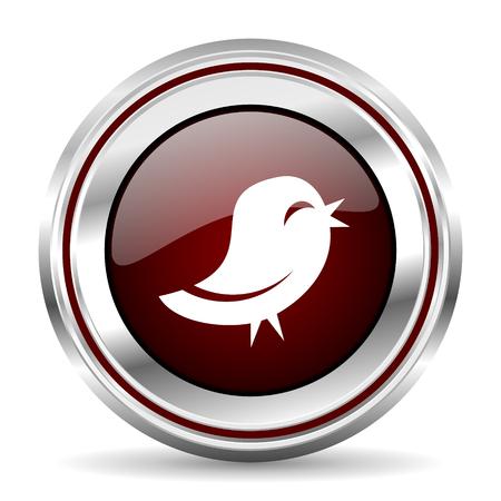 chrome border: bird icon chrome border round web button silver metallic pushbutton Stock Photo