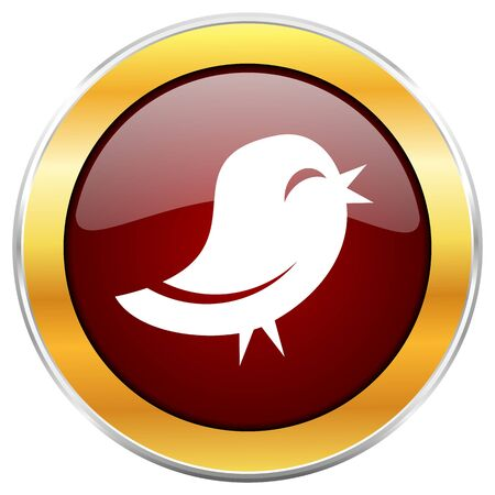 Twitter red web icon with golden border isolated on white background. Round glossy button. Stock Photo