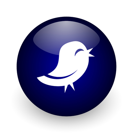 Twitter blue glossy ball web icon on white background. Round 3d render button.