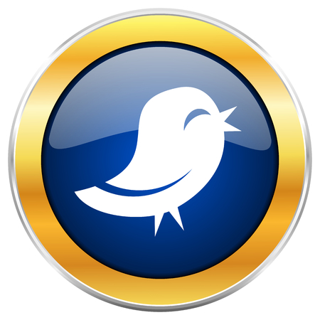 Twitter blue web icon with golden chrome metallic border isolated on white background for web and mobile apps designers.