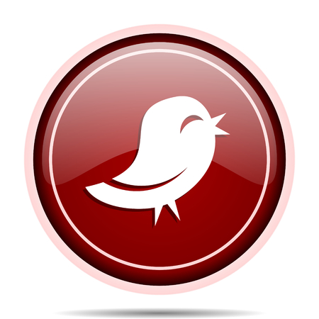 Twitter red glossy round web icon. Circle isolated internet button for webdesign and smartphone applications. Stock Photo