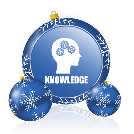 Knowledge blue christmas balls icon