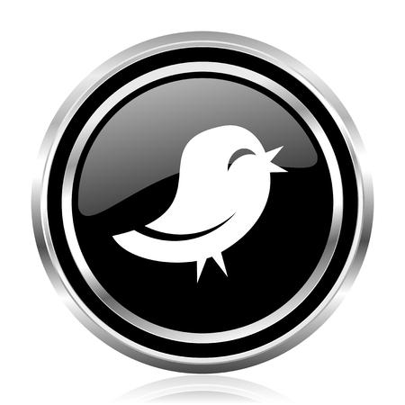 Bird black silver metallic chrome border glossy round web icon