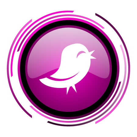 bird pink glossy web icon isolated on white background