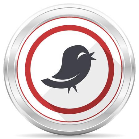 Twitter silver metallic chrome border round web icon on white background