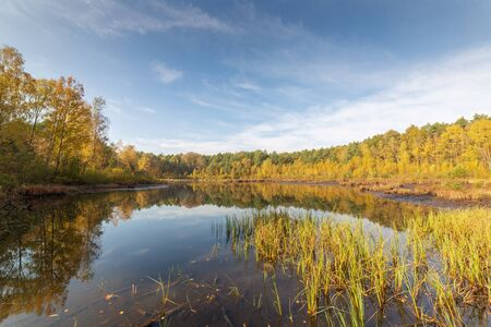 Small lake in forest, autumn landscape