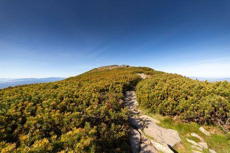 Hiking trail to Babia Gora mountain