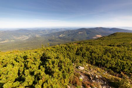 Beskid Mountains landscape, view from hiking trail to Diablak Imagens