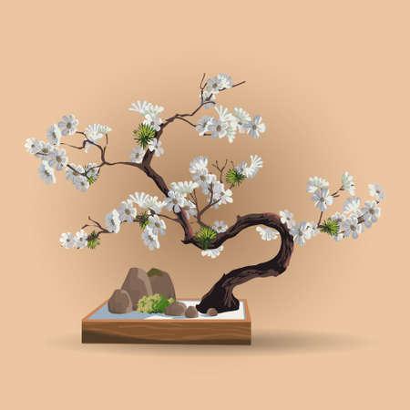 Sakura Tree in bonsai style. Bonsai tree with sakura flowers on the low box. Decorative little tree vector illustration. Cherry blossom tree. Nature art.