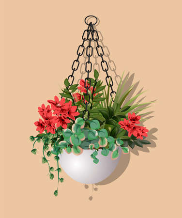 Large beautiful bush of different plants with hanging red flowers in a flower pot isolated on warm background. Vector illustration. Houseplant design element for modern interior room.