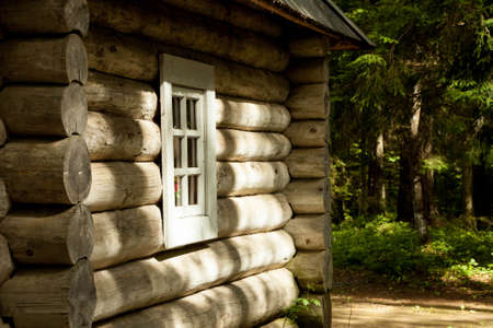 log house: Log house in the Russian coniferous forest in summer