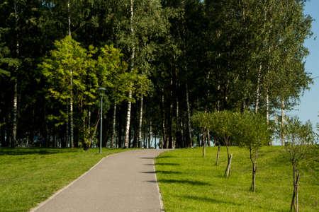 empedrado: Allanado el camino a un hermoso parque de Rusia Foto de archivo