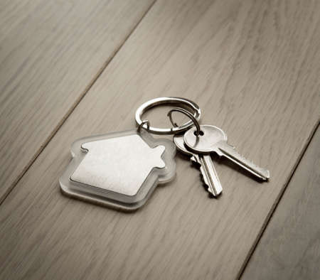 keyring: House keys with house keyring, on a natural background.