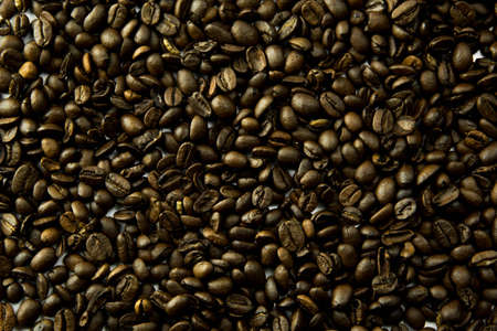seeds coffee: coffee beans in bulk a soft light
