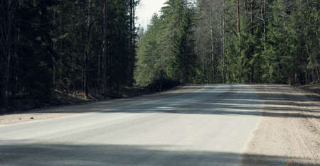 fleeing: the road fleeing into the distance in the spring forest Stock Photo