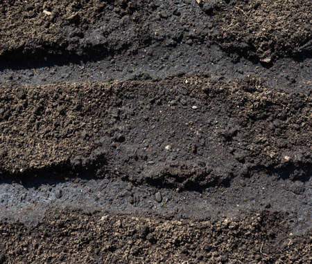 loosen: dig and loosen the soil surface on a bed prepared for planting seeds