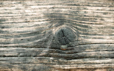 parkett: isolated background the old wood textured surface