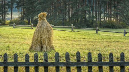 haystack on the field is fenced by a wooden fence